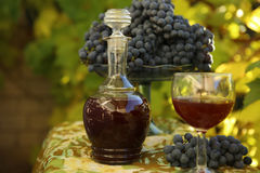 Homemade wine from grapes Royalty Free Stock Images