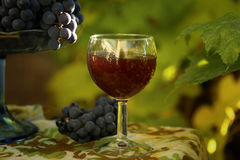 Homemade wine from grapes. Wine glass, grapes  photographed against the background of the vine Stock Images