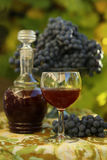 Homemade wine from grapes Royalty Free Stock Photography