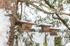 Homemade wooden bird`s feeder on the tree in winter, under snow royalty free stock photography