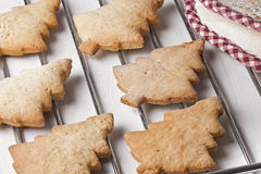 Homemade Xmas Trees Biscuits Oven Reck Stock Images