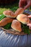 Homemade yeast buns with eggs and green onion filling. Outdoor food photo royalty free stock image