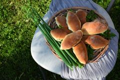 Homemade yeast buns with eggs and green onion filling. Outdoor food photo stock image