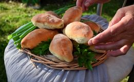 Homemade yeast buns with eggs and green onion filling. Outdoor food photo stock photo