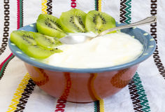 Homemade yoghurt kiwi Royalty Free Stock Photography