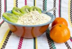 Homemade yoghurt kiwi Royalty Free Stock Photo