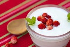Homemade yoghurt with wild strawberries Stock Photo