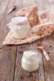 Homemade yoghurt Stock Image