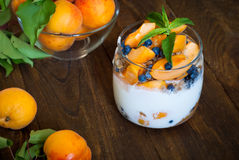 Homemade yogurt with berries Royalty Free Stock Image