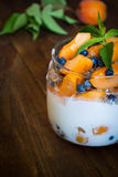 Homemade yogurt with berries Royalty Free Stock Photo