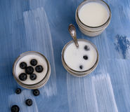 Homemade yogurt with berries Royalty Free Stock Images