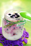 Homemade yogurt with blueberry for baby. Jar of homemade yogurt with fresh blueberry for baby Stock Image