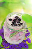 Homemade yogurt with blueberry for baby. Jar of homemade yogurt with fresh blueberry for baby Royalty Free Stock Photography
