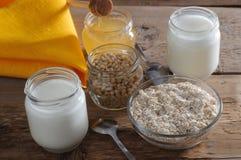 Homemade yogurt with cedar nuts, oatmeal and honey Stock Photography