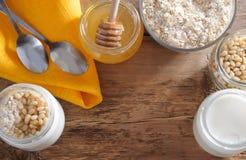 Homemade yogurt with cedar nuts, oatmeal and honey Stock Image