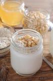 Homemade yogurt with cedar nuts, oatmeal and honey Stock Photos