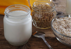 Homemade yogurt with cedar nuts, oatmeal and honey Stock Images