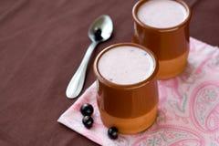 Homemade yogurt in a ceramic bowl. Homemade yogurt with berries in a ceramic bowl Stock Image