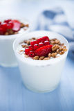 Homemade yogurt with cereals and berries (healthy breakfast) Royalty Free Stock Photos
