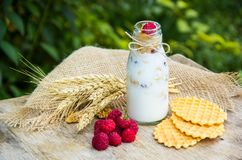 Homemade yogurt with cereals and fruits in a bottle. Fresh organic raspberries and waffles. Copy space Stock Photos