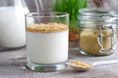 Homemade yogurt with dried wheat germ Stock Images
