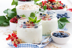 Homemade yogurt with fresh berries and breakfast foods Royalty Free Stock Photography