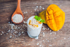 Homemade yogurt with fresh mango slices Stock Image