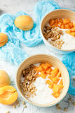 Homemade yogurt with granola, apricot and pine nuts royalty free stock images