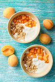 Homemade yogurt with granola, apricot and pine nuts royalty free stock photo