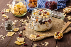 Homemade yogurt with granola, dried fruit and nuts bio Royalty Free Stock Photography