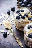 Homemade yogurt with granola muesli and blueberries Stock Photography