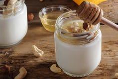 Homemade yogurt with nuts and honey Stock Photos
