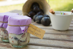 Homemade yogurt with pieces of plums in the glass Stock Photo