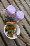 Homemade yogurt with pieces of plums in the white dish. Stock Image