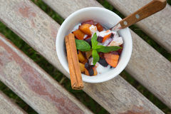 Homemade yogurt with pieces of plums in the white dish Stock Photography