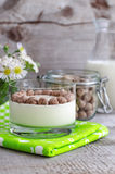 Homemade yogurt with rye bran Stock Images