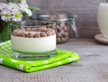 Homemade yogurt with rye bran Stock Photo