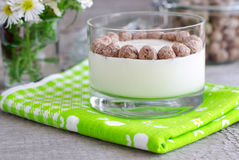 Homemade yogurt with rye bran Royalty Free Stock Photos