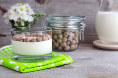Homemade yogurt with rye bran Royalty Free Stock Images
