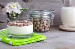 Homemade yogurt with rye bran. Fresh homemade yogurt with rye bran Royalty Free Stock Images