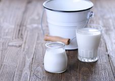 Homemade yogurt Stock Image