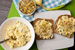 Homemafe sandwiches with eggs salad and sprouts Royalty Free Stock Image