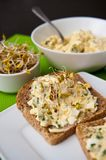 Homemafe sandwiches with eggs salad and sprouts Royalty Free Stock Photos