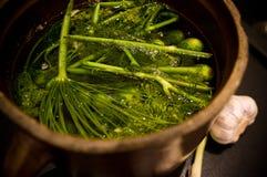 Homemage gravade fotoet för gurkastillebenmat Arkivfoto