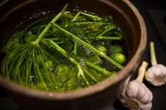 Homemage gravade fotoet för gurkastillebenmat Arkivfoton