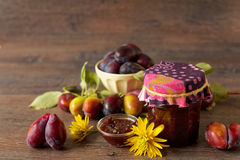 Homemkade plum jam and fresh fruits Stock Image