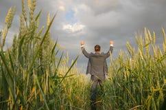 Homens de negócios em um campo de trigo Fotos de Stock