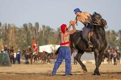 Homens do nômada após um fósforo de luta romana a cavalo, vencido que felicita o vencedor foto de stock royalty free