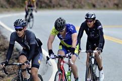 Homens em uma raça da bicicleta Imagens de Stock