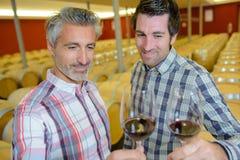 Homens que brindam na adega de vinho Imagens de Stock